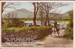 The Little Lanes Of Ireland Fairyland Eva Brennan Going To Market Eire Old Postcard 1922 - Irlande