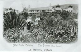 RPCP : Gran Canaria, La Palmas, Photo Of Old Postcard, 2 Scans - Repro's
