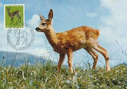 D38791 CARTE MAXIMUM CARD TRIPLE 1967 SWITZERLAND - DEER CP ORIGINAL - Maximumkaarten