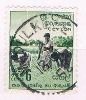 Ceylon 348 Used Harvesting Rice 1958 (C0294) - Ceylon (...-1947)