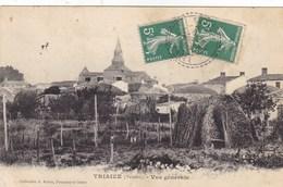 Vendée - Triaize - Vue Générale - France