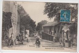 ASNIERES SUR SEINE ROBINSON SOUVENIR DE NOTRE PROMENADE TBE - Asnieres Sur Seine