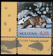 Moldavie. Moldova.  Renard. Fox - Dogs