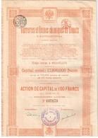 Ancienne Action - Verreries Et Usines Chimiques De Donetz à Santourinovka - Titre De 1920 N° 137175 - Russland