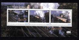 Trein, Train, Locomotive, Eisenbahn : Railway Heritage:Centraal Afrika; Bewdley Evening -2 - Treni