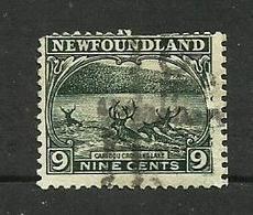 Terre-neuve N°124 (second Choix) Cote 35 Euros - Terre-Neuve