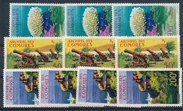 DI-161: COMORES:  Lot Avec PA  N°6**(3) Gomme  Pts Défauts)-18**(3)-19**(4) - Comoro Islands (1950-1975)