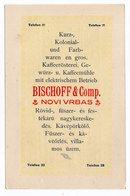 1930s  YUGOSLAVIA, NOVI VRBAS, ADVERTISEMENT CARD, BISCHOFF AND CO, BIŠOF I DRUG - Advertising