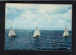 Sport / Voile / Voiliers En Mer / Régate - Voile