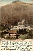 Hrastnik, Gruss Aus Hrastnigg, Potovala 1901, Vila De Seppi - Slowenien