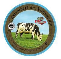 ETIQUETTE De FROMAGE..CAMEMBERT De NORMANDIE..Le Suzerain..Domaine De SAINT LOUP à SAINT LOUP De FRIBOIS ( 14) - Cheese