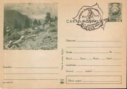 Romania - Postal Stationery Postcard Military 1972 Code - 830 - Postal Stationery