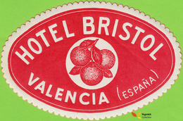 Voyo HOTEL BRISTOL Valencia Spain Hotel Label  Sticker 1960s Vintage - Etiquettes D'hotels