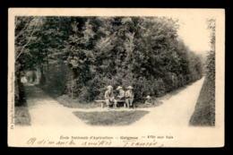 78 - GRIGNON - ECOLE NATIONALE D'AGRICULTURE - ALLEE AUX BUIS - Grignon