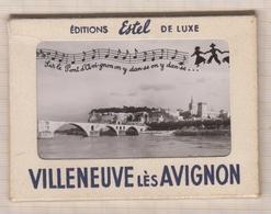 20A67 Carnet VILLENEUVE LES AVIGNON  10 VUES PHOTOS - Avignon
