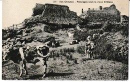 Manche ILES CHAUSEY Paturages Sous Le Vieux Château (troupeau De Vaches) - Autres Communes