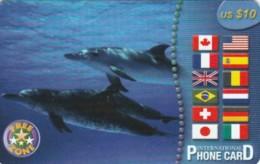 PREPAID PHONE CARD STATI UNITI (PY313 - United States