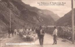 Italie - San Dalmazzo Di Tenda (Valle Roia) - Strada Nazionale Al Confine Italo-francese Capre Goat - Italia