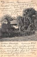 ERLENHAUS (OBERSASBACH) NAPOLEONSWEIDE PHOTO POSTCARD 43284 - Deutschland