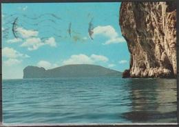 Cartolina - Alghero - Punta Giglio E Capocaccia - Viaggiata 1969 - Sassari
