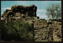 Ephesus  -  Marien Konzilskirche  -  Ansichtskarte Ca. 1968     (12425) - Türkei