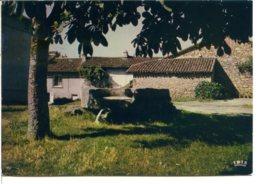 87140 NANTIAT - Place De La Mothe, Fond Baptistère Du XI° Siècle - Postée En 1985 - Nantiat