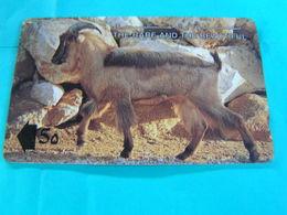 OMAN  Used  GPT Card  13OMNC  Animal. Arabian Tahr - Oman