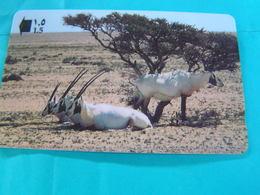 OMAN  Used  GPT Card  34OMNN  Animal. Arabian Oryx - Oman