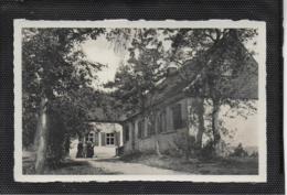 AK 0413  Plodda ( Dübener Heide ) - Kirchliches Landheim / Ostalgie , DDR Um 1958 - Bitterfeld