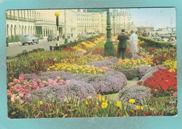 Small Old Post Card Of Carpet Gardens,Eastbourne,Sussex,S96. - Eastbourne