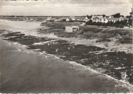 DAMGAN - La Plage Et Les Villas - KERVOYAL - CPSM TBon Etat (voir Scan) - Damgan