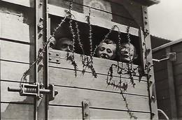 Deutschland - Ehemaliges Konzentrationslager RAVENSBRÜCK - Concentration Camp RAVENSBRÜCK - Guerre 1939-45