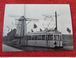 LILLO  1960  -  SNCV  - Motrice Standart    -   (Photo  R. Temmerman ) - Tramways