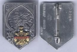 Insigne Du 9e Régiment D'Artillerie De Marine - Armée De Terre