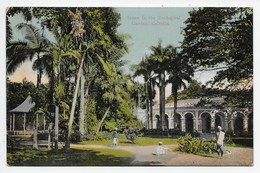 Calcutta - Scene In The Zoological Garden - India