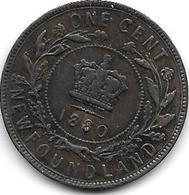 *New Foundland 1 Large  Cent 1880  Km 1  Vf - Canada