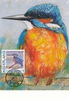 D38913 CARTE MAXIMUM CARD 2011 NETHERLANDS - KINGFISHER ALCEDO ATTHIS EISVOGEL MARTIN-PÊCHEUR CP ORIGINAL - Vogels