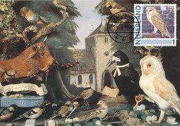 D38917 CARTE MAXIMUM CARD 2011 NETHERLANDS - BARN OWL TYTO ALBA CP ORIGINAL - Uilen
