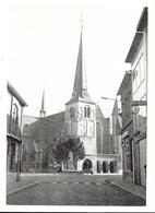 Kontich - St. Martinuskerk. - Kontich