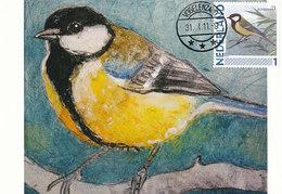 D38922 CARTE MAXIMUM CARD 2011 NETHERLANDS - PARUS MAJOR GREAT TIT CP ORIGINAL - Zangvogels
