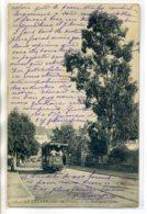 06 LE CANNET  Boulevard Carnot Tramway Electrique écrite - 318 ND   /D18-S2017 - Le Cannet