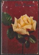 Cartolina - Buon Onomastico - Viaggiata 196. - Fiori