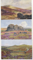 England Old Uncirculated Postcards - Dartmoor - Altri