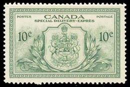 Canada (Scott No.E11 - Livraison Spéciale / Special Delivery) (**) - Exprès