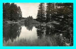 A800 / 553  15 - VEDRINES SAINT LOUP Etangs Des Monts De La Margeride - Frankreich
