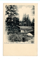 Le Pont Romain à Montigny-saint-christophe / Nels Serie 10 N° 2 - Erquelinnes