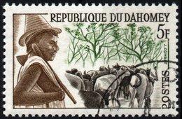 DAHOMEY, TRIBU, 1963, 5 F., FRANCOBOLLO USATO, Mi:DY 202, Scott:DY 162, Yt:DY 181 - Benin – Dahomey (1960-...)