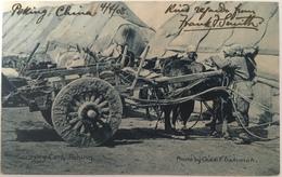 V 60310 Cina - Pechino ( 1908 ) - China