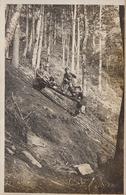 CARTE PHOTO ALLEMANDE - GUERRE 14-18 - VOSGES - VOGESEN - FUNICULAIRE À VOIE ÉTROITE - Guerre 1914-18