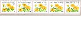 Bloemen.  Tagetes Patula.  Zelfklevende Rolzegelsn Niet Genummerd. In Stook Van Vijf. - Francobolli In Bobina